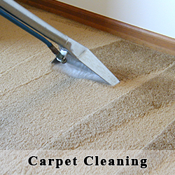 How to use a Steam Cleaner to clean your carpets