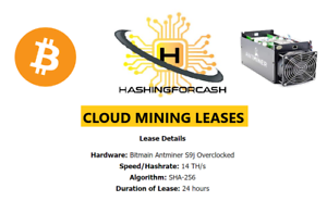 Procedure and Preferences of Bitcoin Cloud Mining